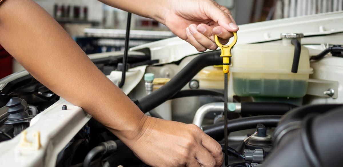 Inyección Diesel Gallardo